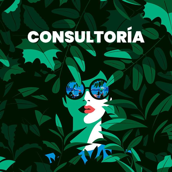 consultoria digital zaragoza